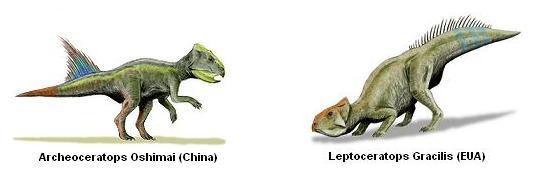camboja-ceratopsideos